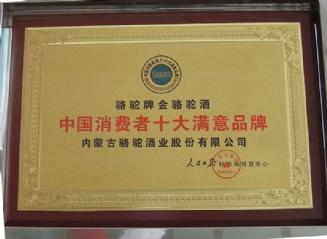 中国消费者十大满意品牌